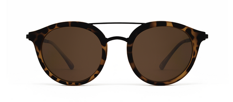 Beta Marrom Tortoise com Lentes Marrons