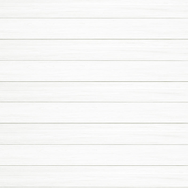 Shiplap Wall Paint Kit - White
