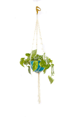 Rope Core Macrame Hanging Planter - Braided - SRC Belay Device