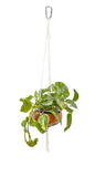 Rope Core Macrame Hanging Planter - Braided - Carabiner