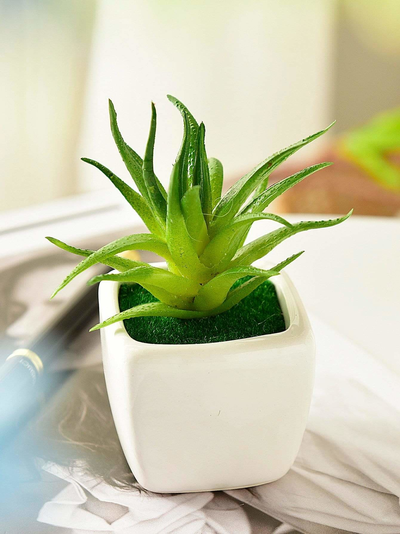 Artificial Succulent Plant With Ceramic Pot - Vases & Artificial Flowers