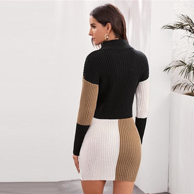 Colorblock High Neck Knitted Sweater Mini Dress Without Belt - Dresses