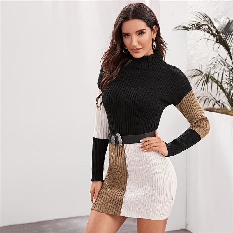 Colorblock High Neck Knitted Sweater Mini Dress Without Belt