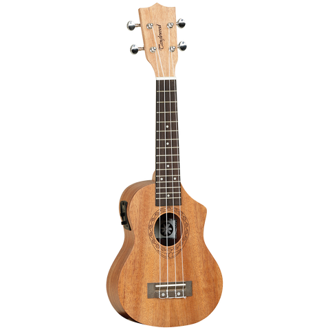 Tanglewood TWT1CE