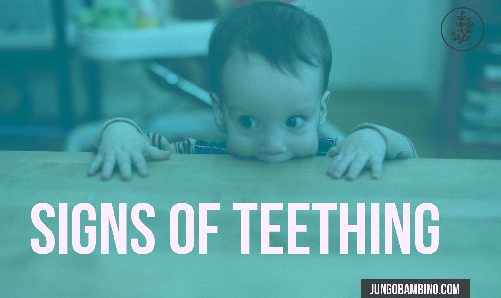 What Are The Signs of Teething
