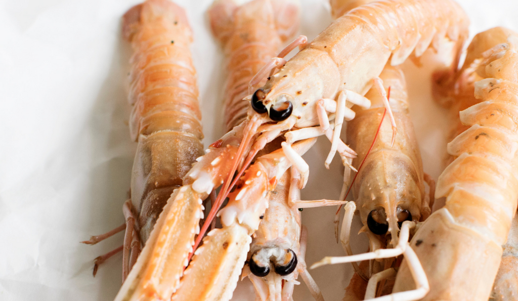 Everything You Need to Know About Langoustines (AKA Scampi or Norway Lobster)
