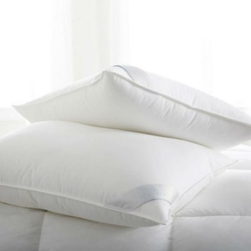 Bergen Down Free Pillows