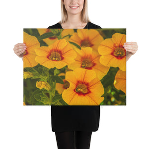 Canvas: Flowers in Bloom