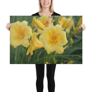 Canvas: Lillies in Bloom