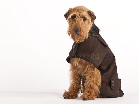 Casual Wool Dog Coat