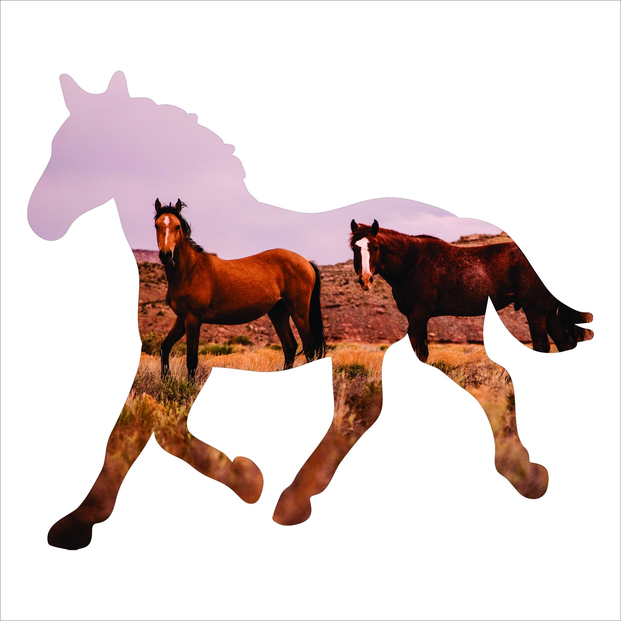 Home Decor - Horse Silhouette Imagery Sign