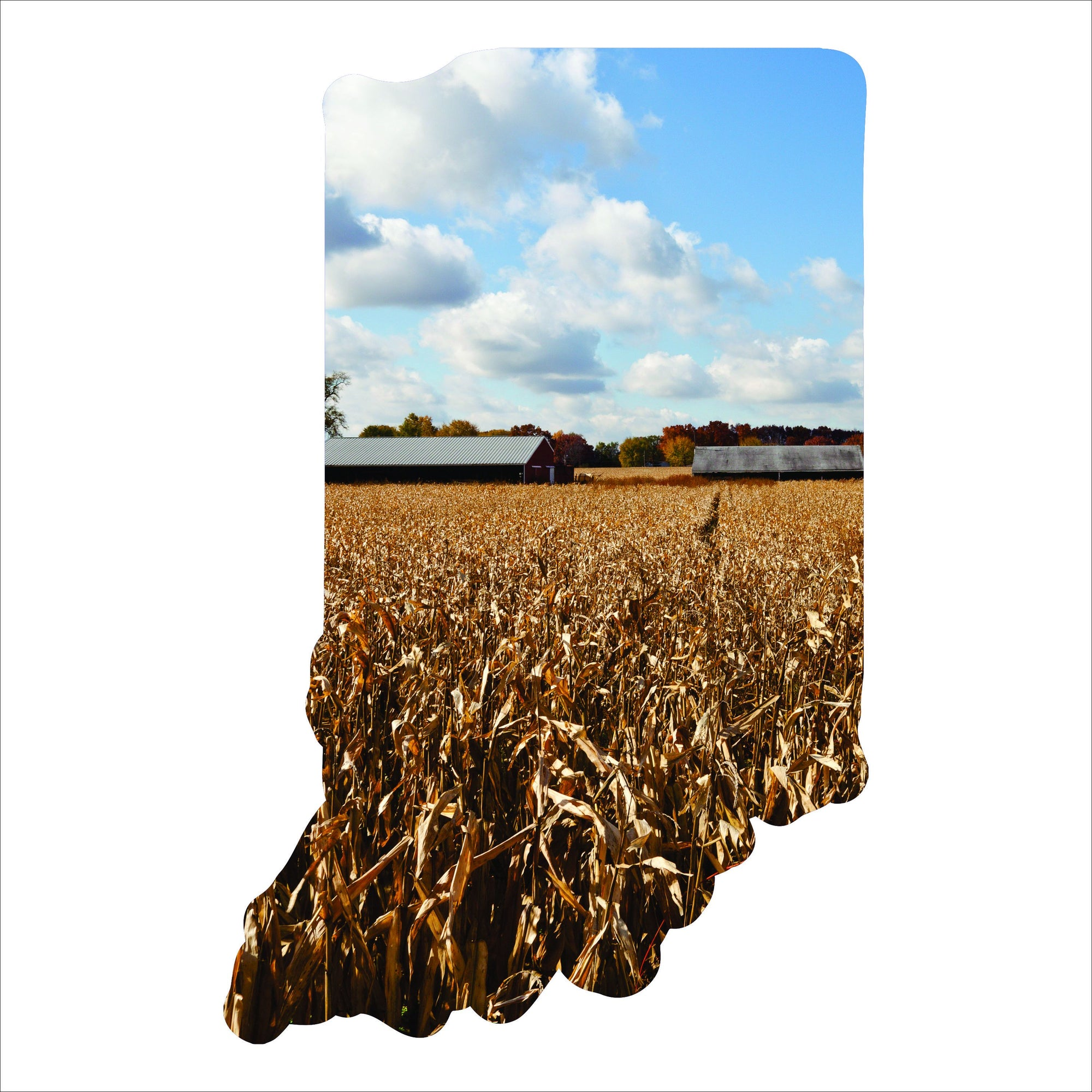 Home Decor - Indiana Imagery Sign