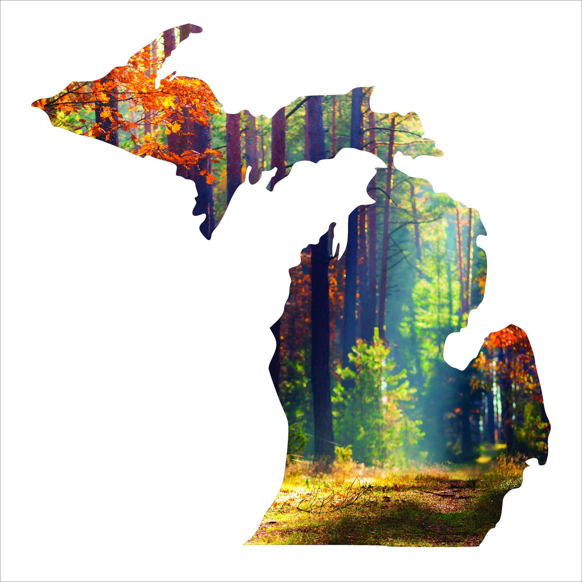 Michigan Silhouette Imagery Sign