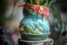 "Load image into Gallery viewer, 02-C ""Fun"" Gourd Planter"
