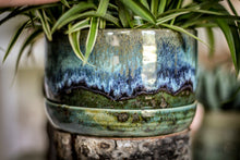 Load image into Gallery viewer, 19-E Spanish Moss Planter - MISFIT, 5% off