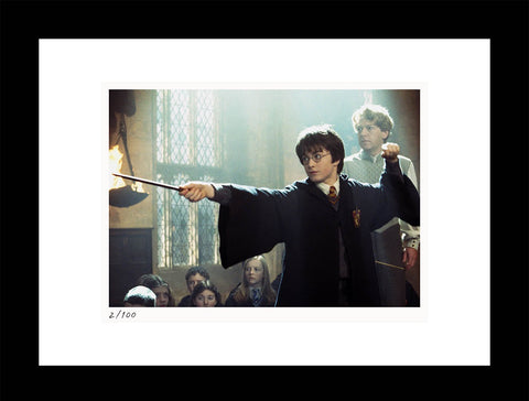 Harry Potter and the Chamber of Secrets Print