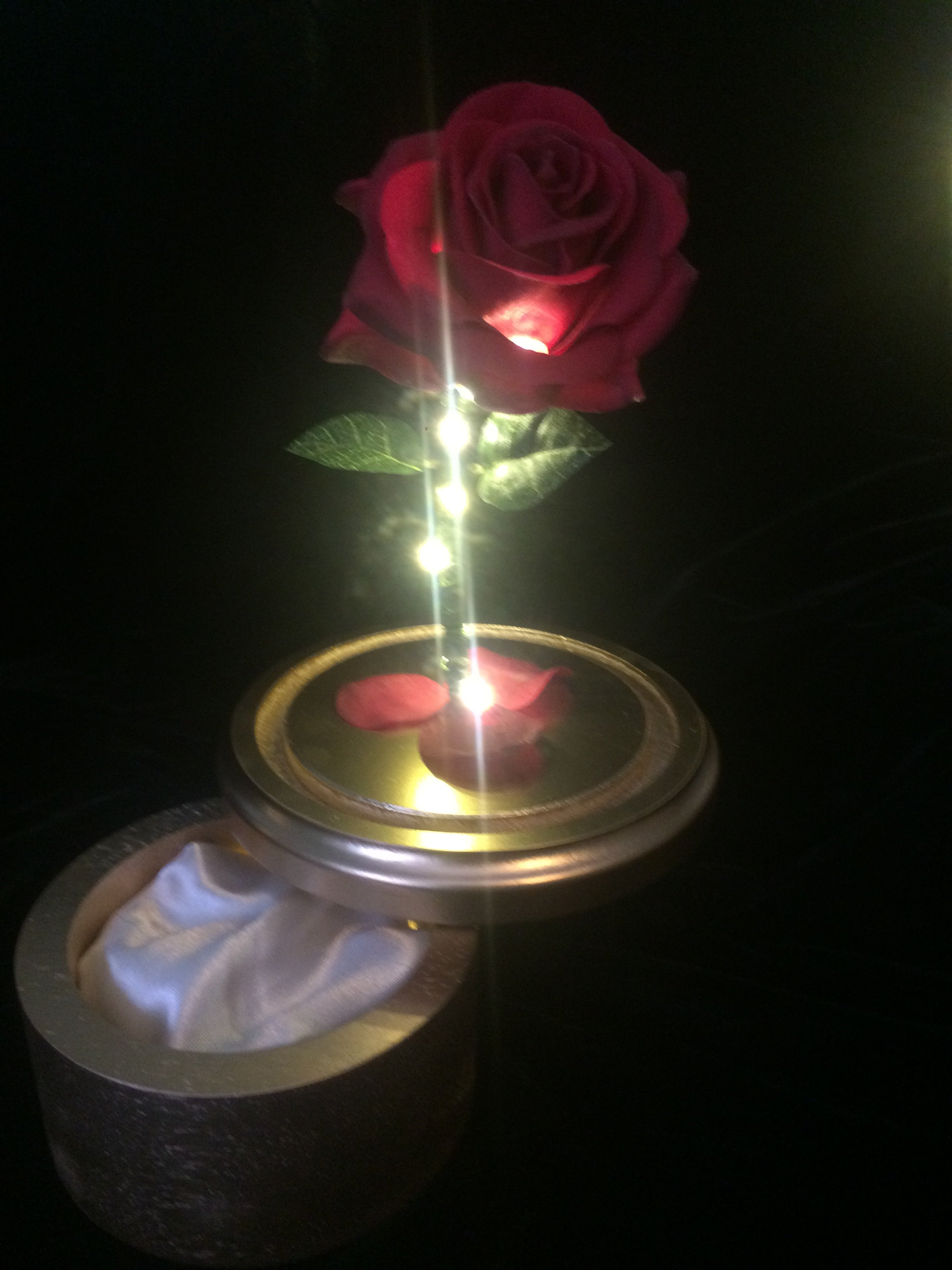 Beauty and the Beast Enchanted Rose Ring box Proposal Prop WITH vintage style enchanted hand mirror