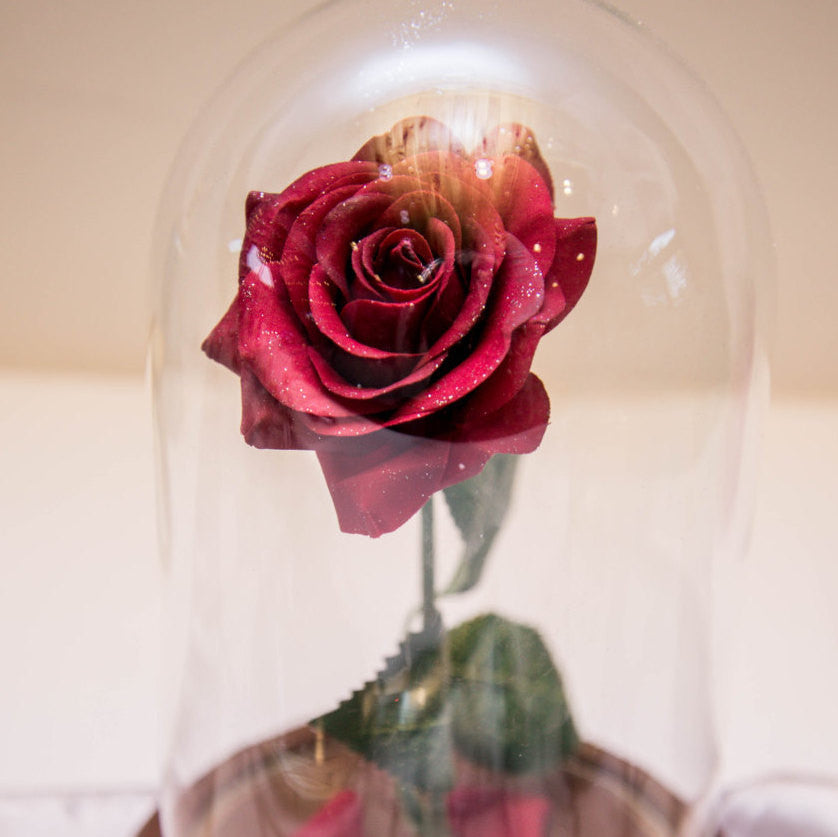 SALE!!! Beauty and the Beast Enchanted Rose Jar Dome Belle Valentine's Day