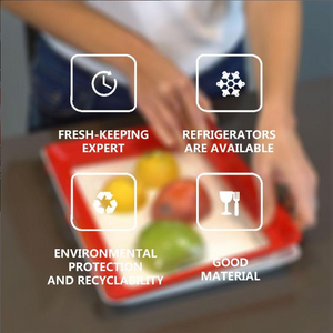 Fresh Food Preservation Tray2