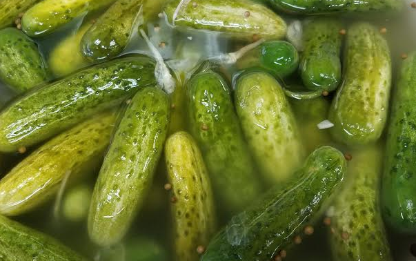 Connecticut pickle law