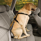 Front Facing Dog Seatbelt Harness