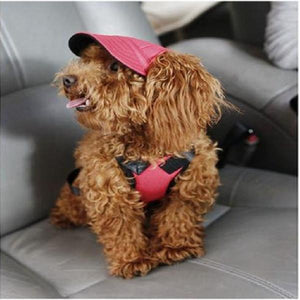 Visor Outdoors Fashion Dog Baseball Sun Hat Car