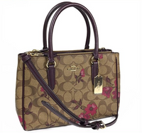 Coach F88562 Mini Surrey Satchel Bag Crossbody Khaki Berry Multi Floral - Gaby's Bags