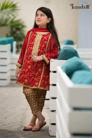 Maria B D-208 Kids Wear Lawn Embroidered Two Piece