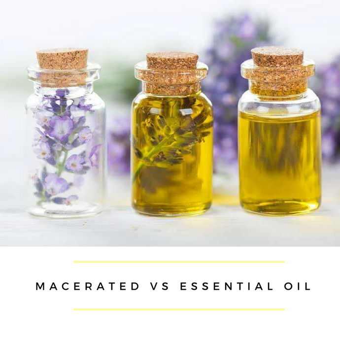 Macerated (Infused) Oil VS Essential Oil