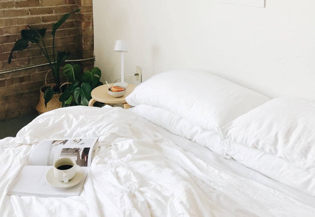 Bamboo Pillow Cases Cozy Earth