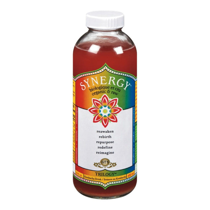 GT'S KOMBUCHA TRILOGY BIO 480 ML