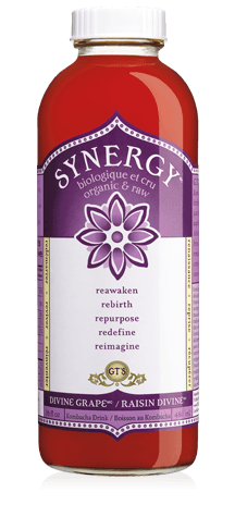 GT'S KOMBUCHA RAISIN DIVINE BIO 473 ML
