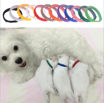 Puppy Whelping Collars 12pcs/set