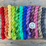 Inclusive Rainbow Pigtail Set