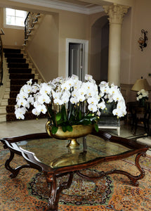 12-15 Double Orchid Arrangement