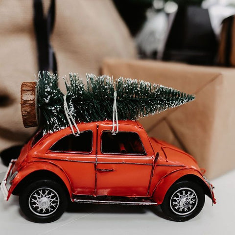 Red Festive Beetle with Tree