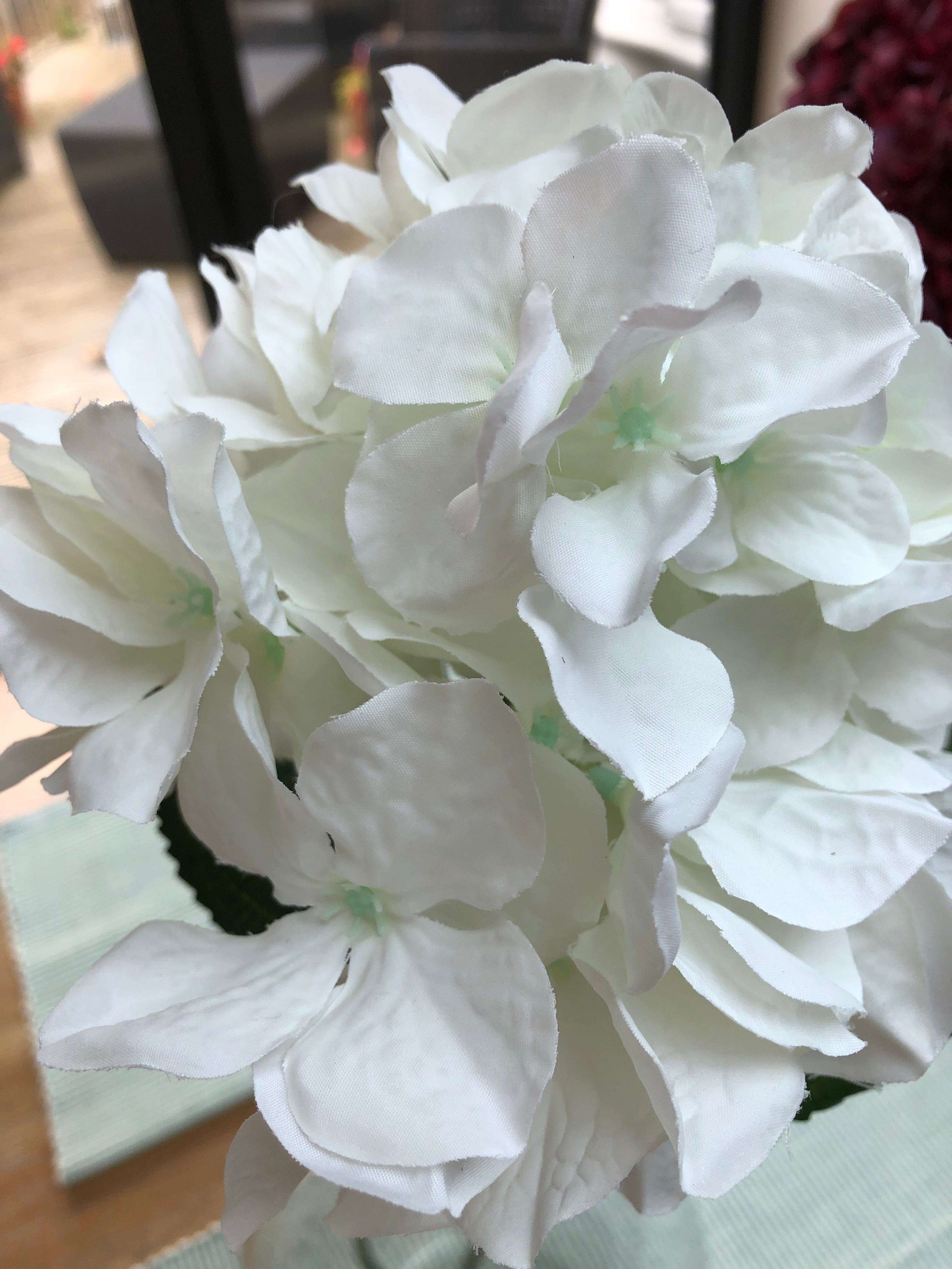 Mini White Hydrangeas - Further reduction
