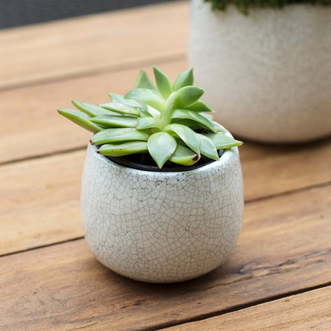 Crackle Glazed Ceramic Pot
