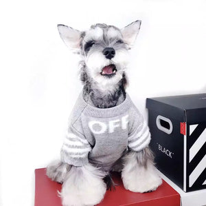 Dog white clothing