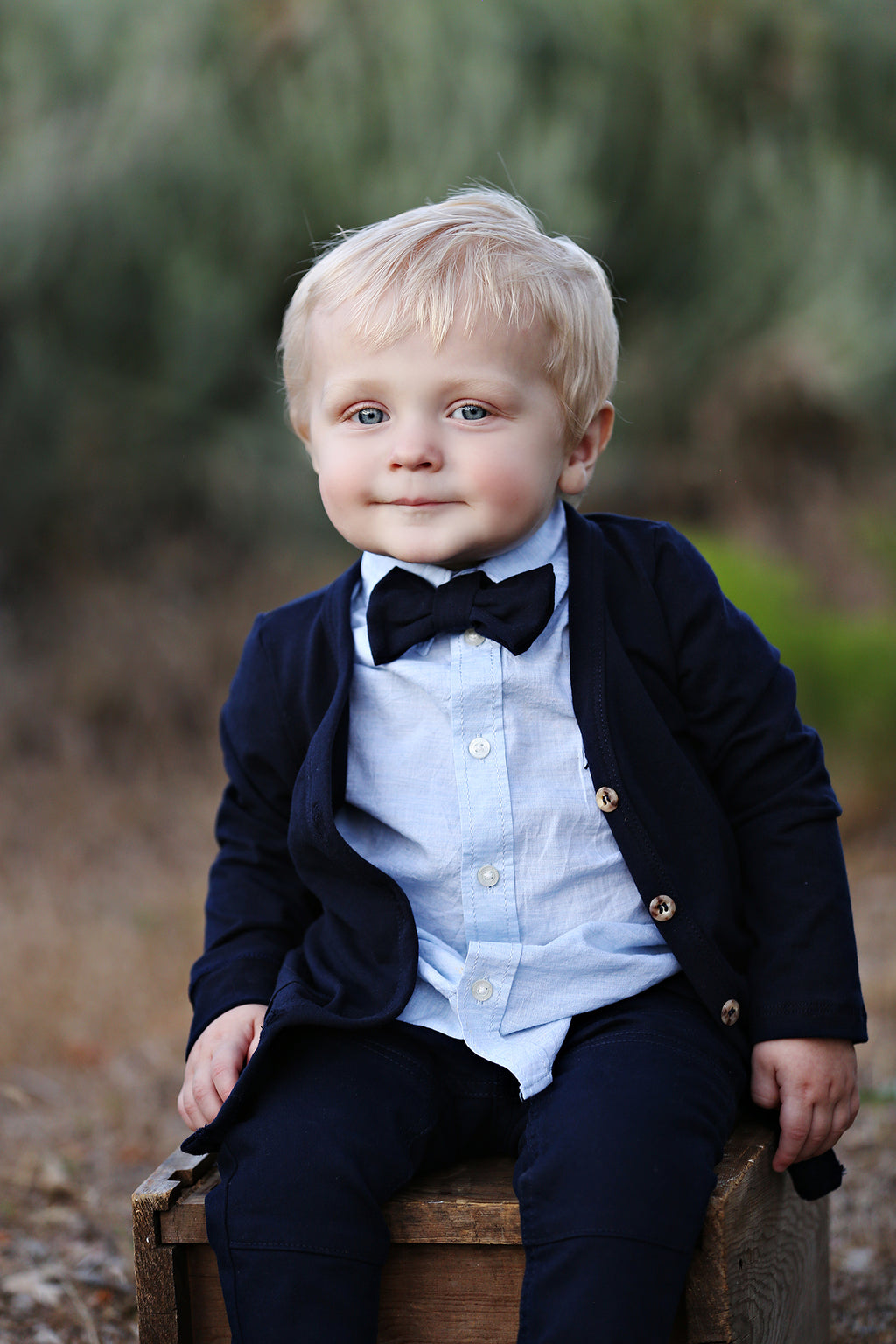 Solid Navy Blue Bow Tie
