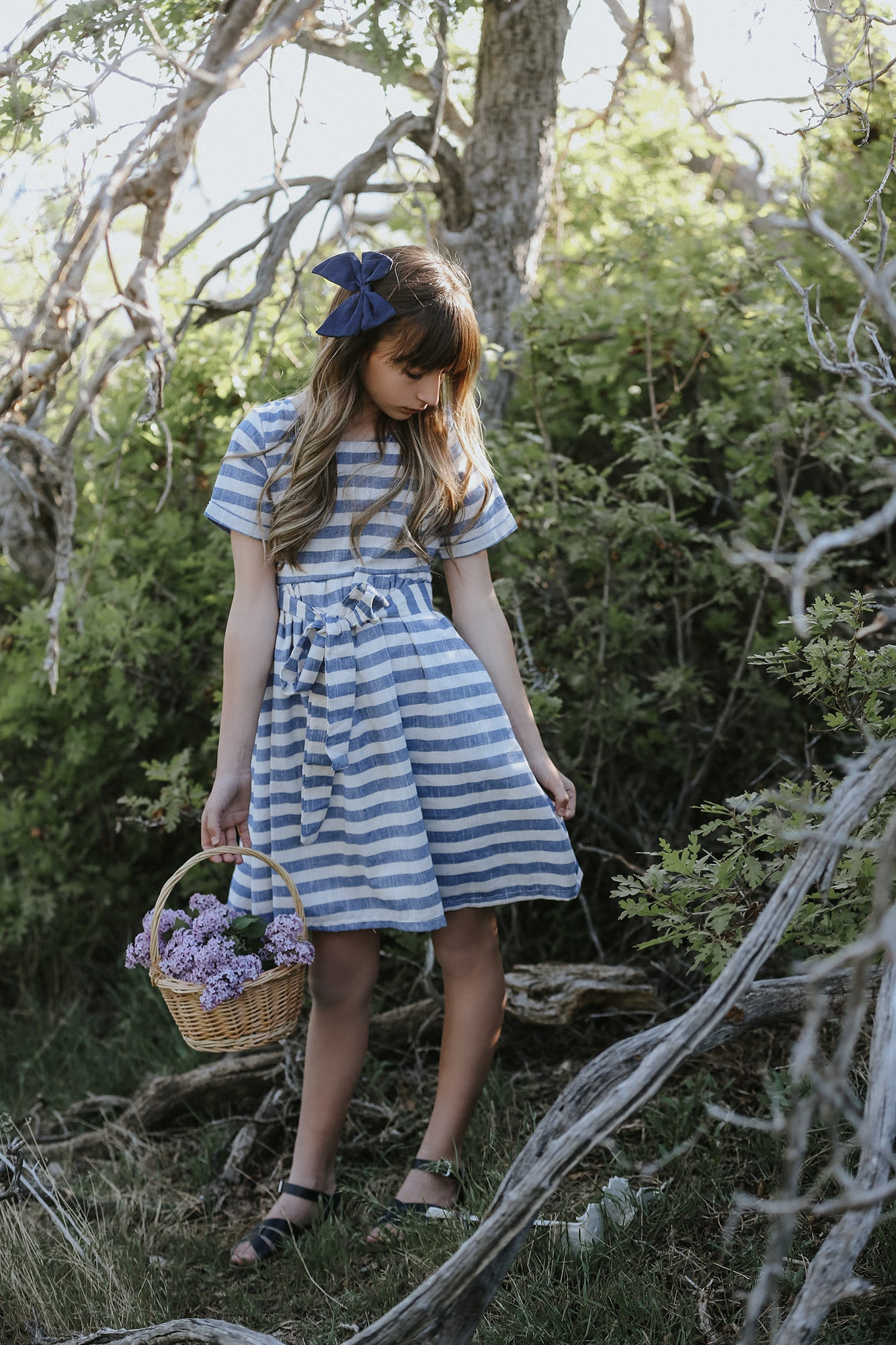 Briar Blu Stripe Dress