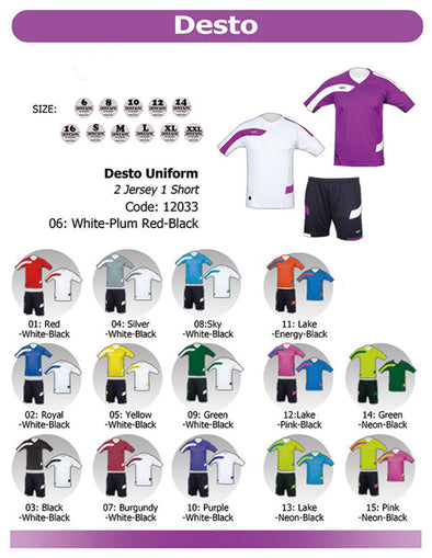 Desto 2 Jerseys & 1 Short Set