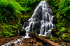 Fine Art Print Fairy Falls James K Watson Photography