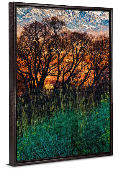 Fine Art Print Fiery Fields James K Watson Photography Canvas Floater Frame