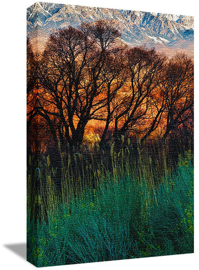 Fine Art Print Fiery Fields James K Watson Photography Canvas Print