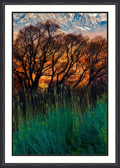 Fine Art Print Fiery Fields James K Watson Photography_Framed Print