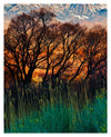 Fine Art Print Fiery Fields James K Watson Photography_Uprint 8x10