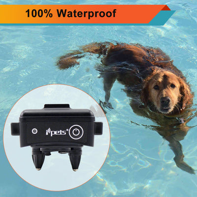 Waterproof Dog Training Collar Ipets 619 Dog Swimming