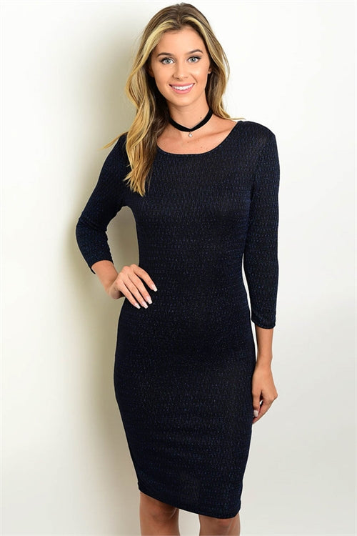 Black & Blue Fitted Dress