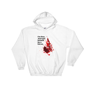 Kicked by a horse - Unisex Hooded Sweatshirt